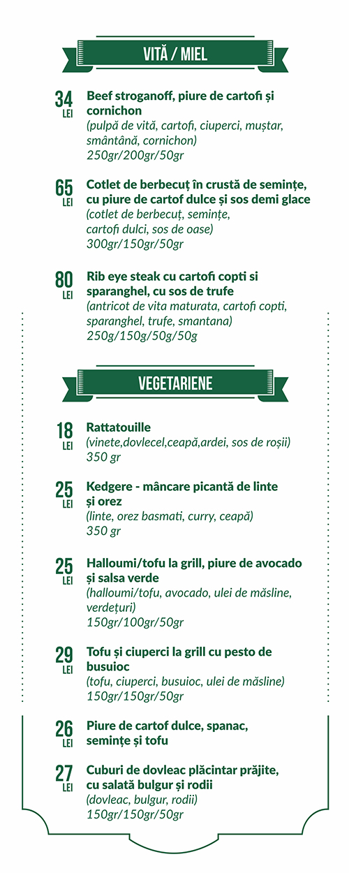 07 food menu decebal vegetariene